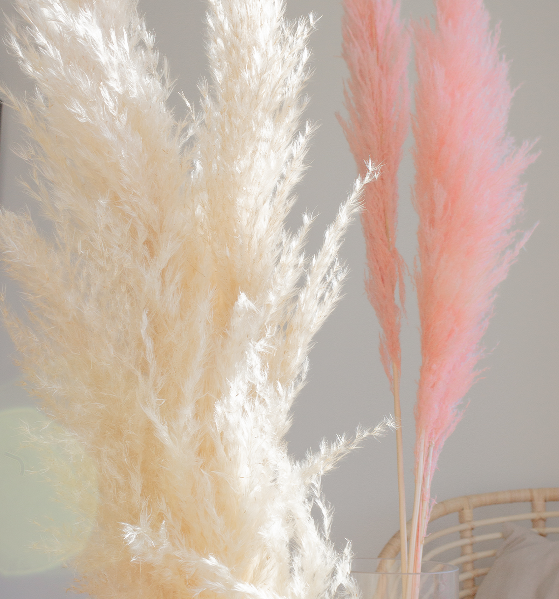 COIE Boutique Pampas grass stems are always a great housewarming gift idea for women!