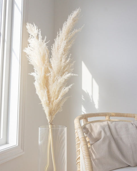 Style your natural dried pampas grass stems
