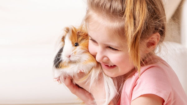 how to safely introduce your children to new small pets in the household