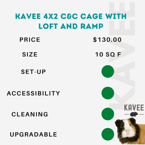 4x2 c and c cage with loft and ramp for guinea pigs kavee usa