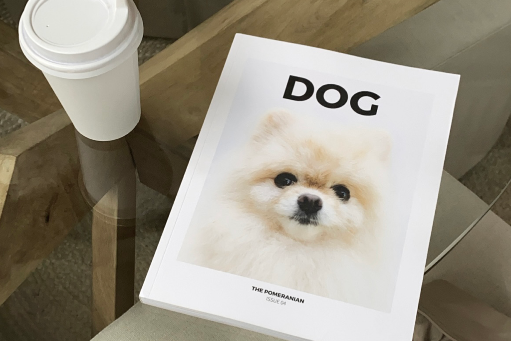 Bourke St. the Label - Shopping for Dog Parents - Dog Mag