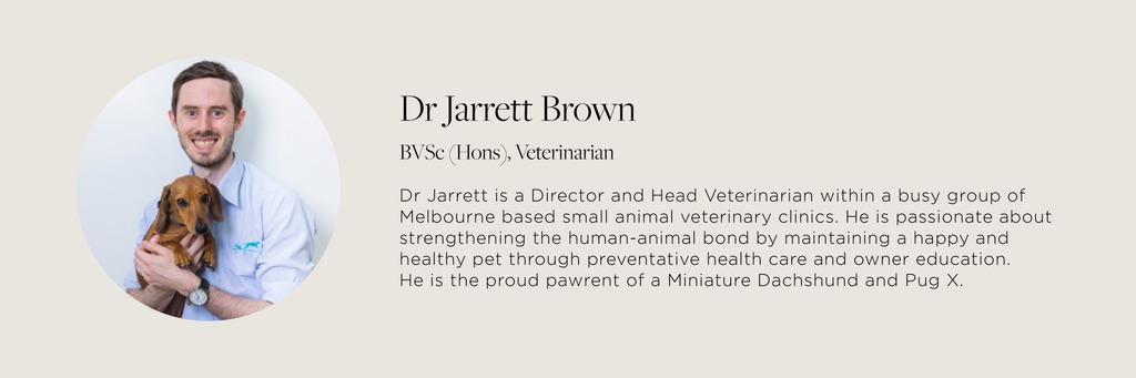 Bourke St. the Label - Vet Advice - Dr. Jarrett Brown - A Checklist for First Time Puppy Pawrents
