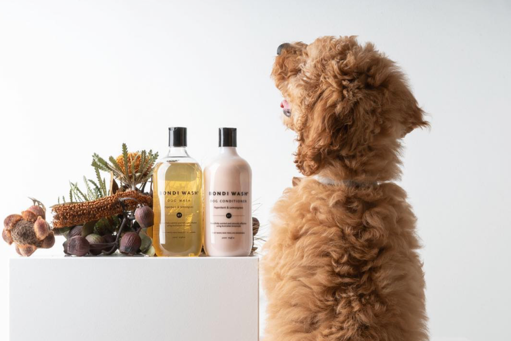 Bourke St. the Label - Dog Grooming Products - Bondi Wash Dogs