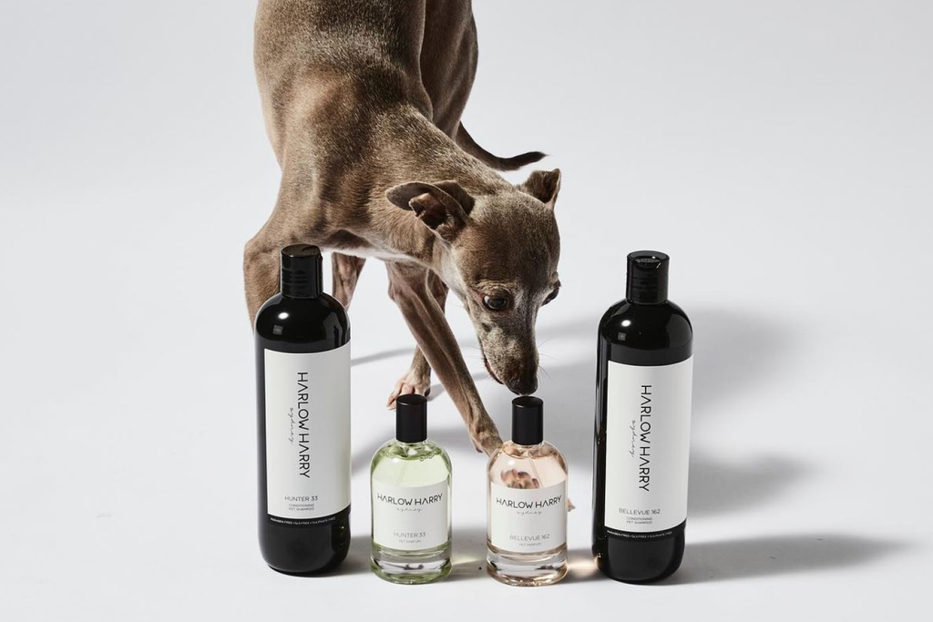 Bourke St. the Label - Dog Grooming Products - Harlow Harry
