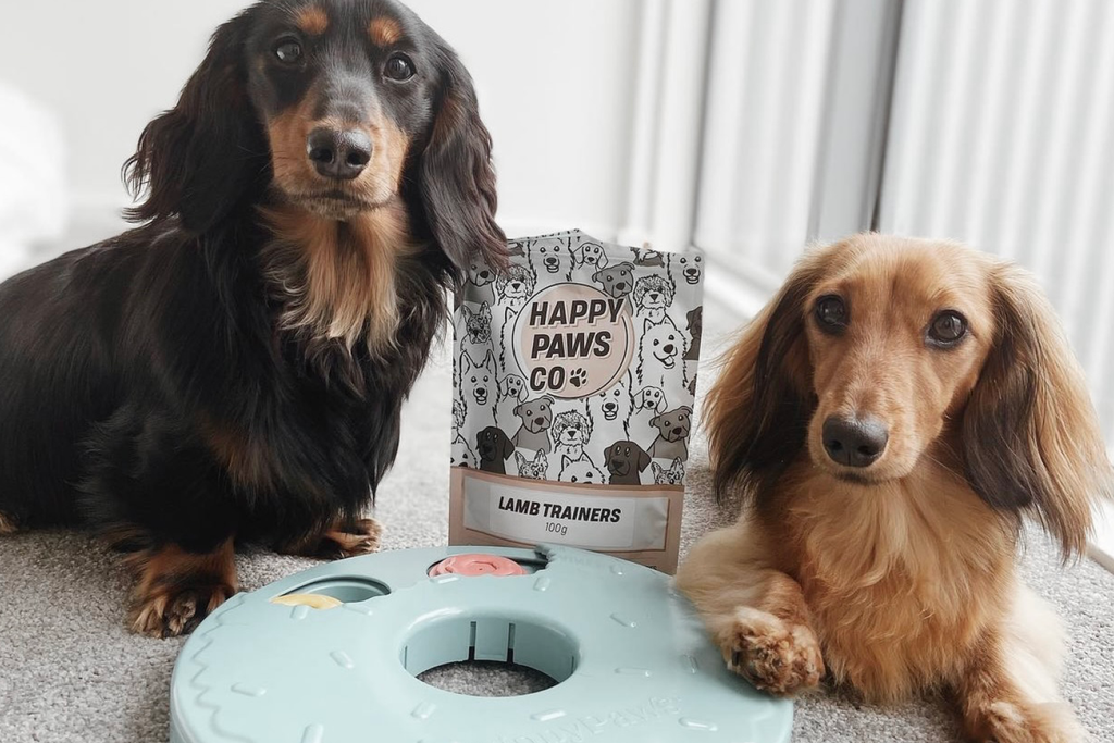 Bourke St. the Label - Enrichment Toys for Dogs - Happy Paws Co.