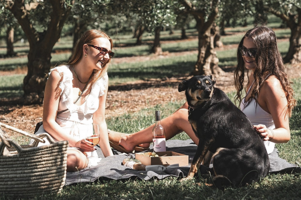 Bourke St. the Label - Dog Friendly Wineries - Green Olive at Red Hill