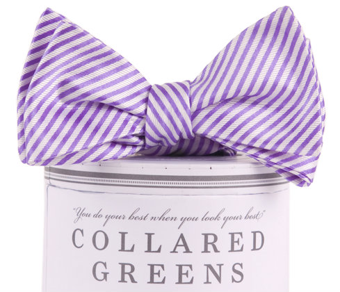 Collared Greens - Signature Series Bow Tie - Purple - Bow Tie - The American Gentleman