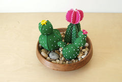 Cactus Garden D.I.Y. Felt Sewing Kit