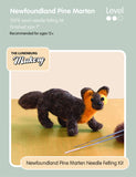 beginner-needle-felting-kit-pine-marten-wool-tools
