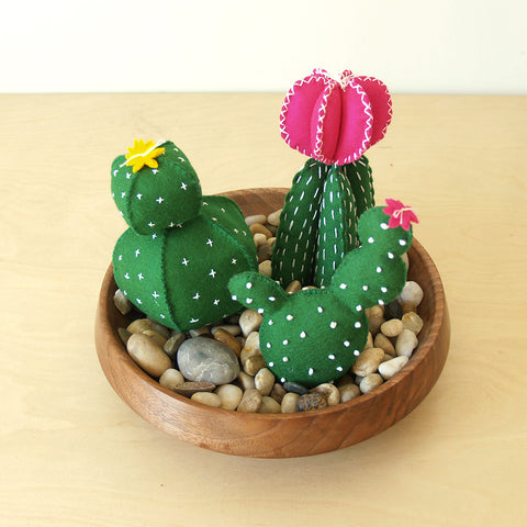 Cactus Garden D.I.Y. Felt Hand Sewing Kit
