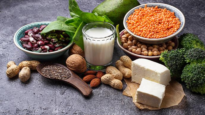 5 sources of vegetarian protein