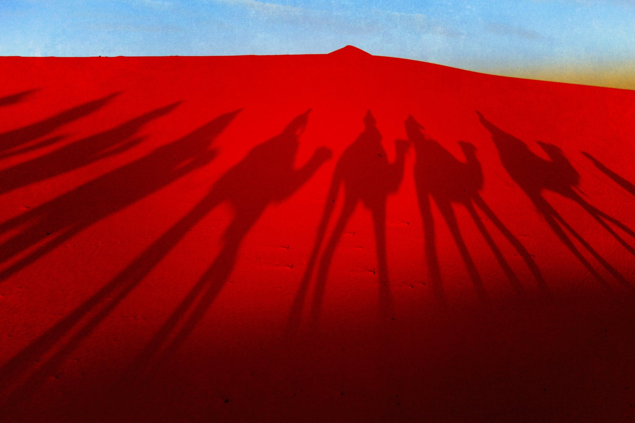 Sahara camel trek,shadows in  red sand, limited edition photograph