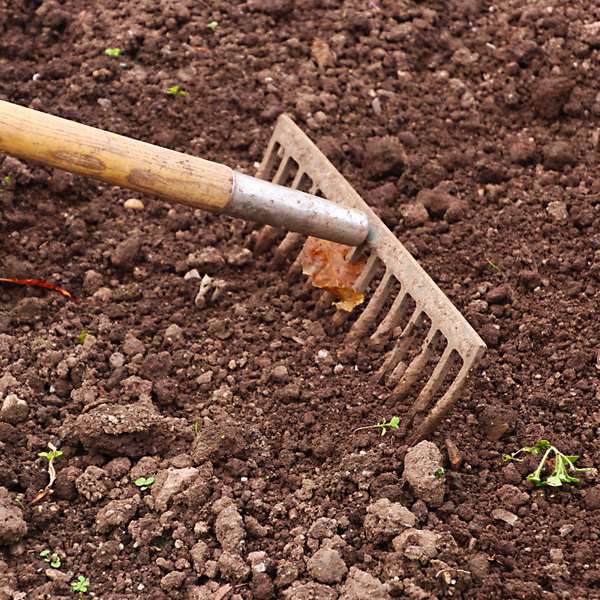 Living Soil Care: The First Steps to a New Garden