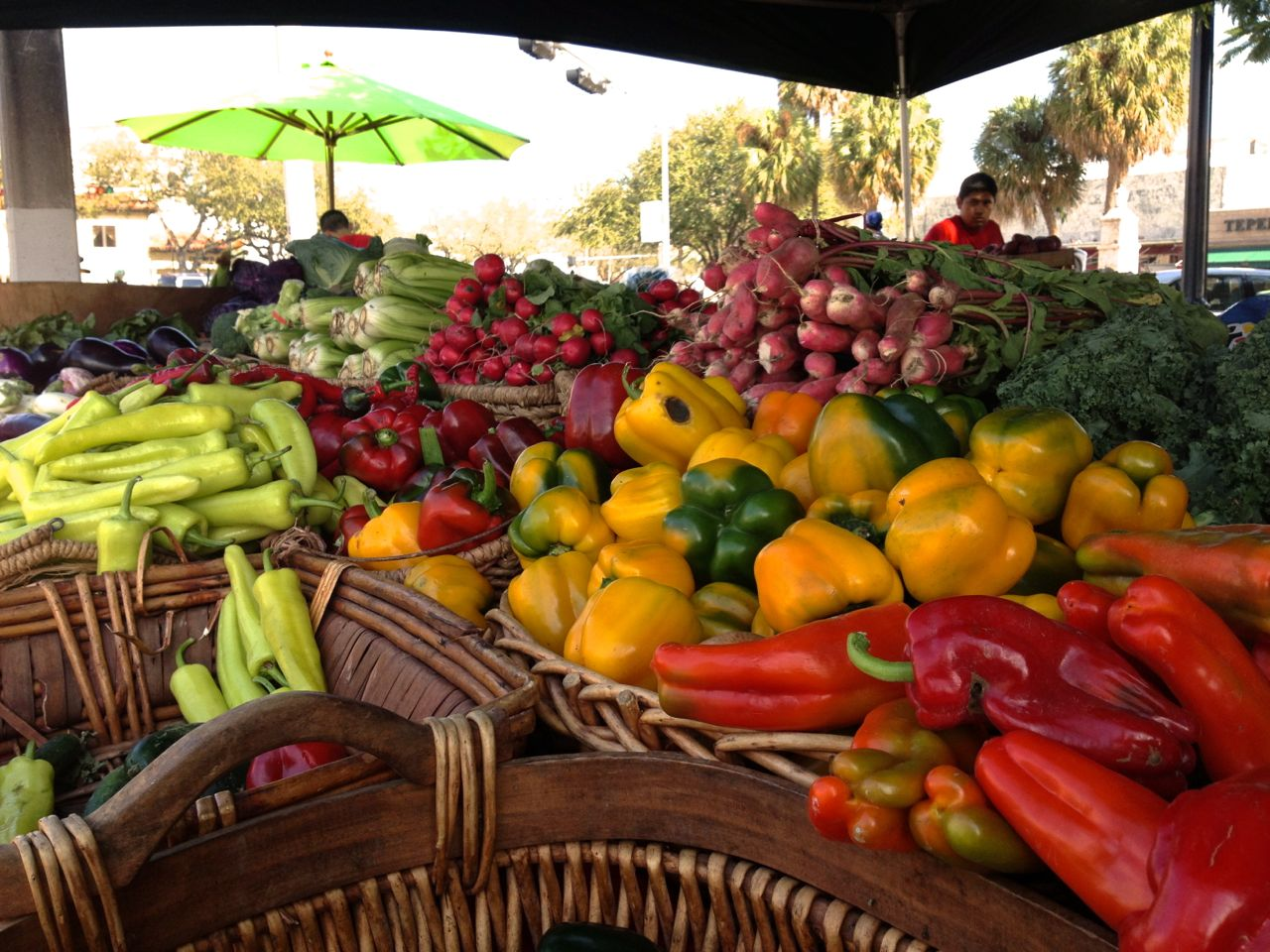 large selection with assorted vegetables