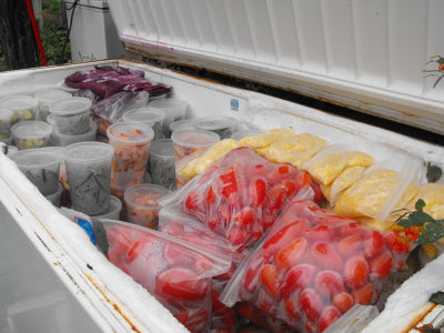 assorted fruits in containers and bags in a freezer
