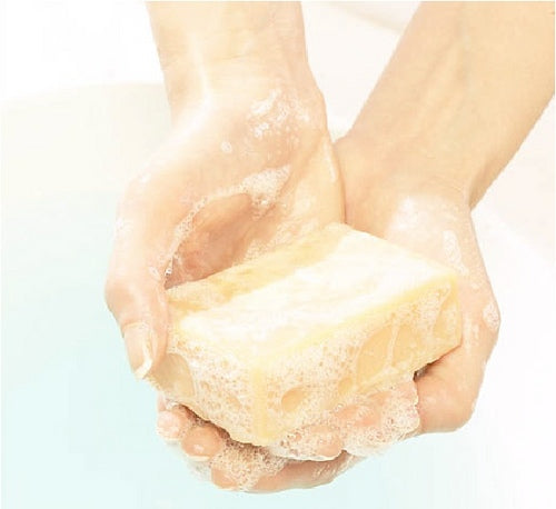 pair of hands holding a bar of soap