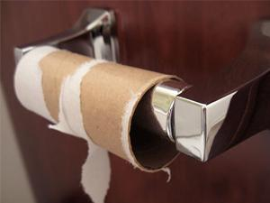last sheet of toilet paper torn off the cardboard roll
