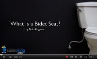 What is a Bidet Seat