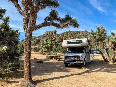 A motor home in a joshua tree forest campbround