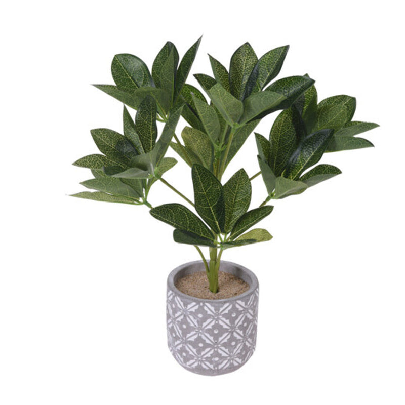 Artificial Plant in Cement Pot