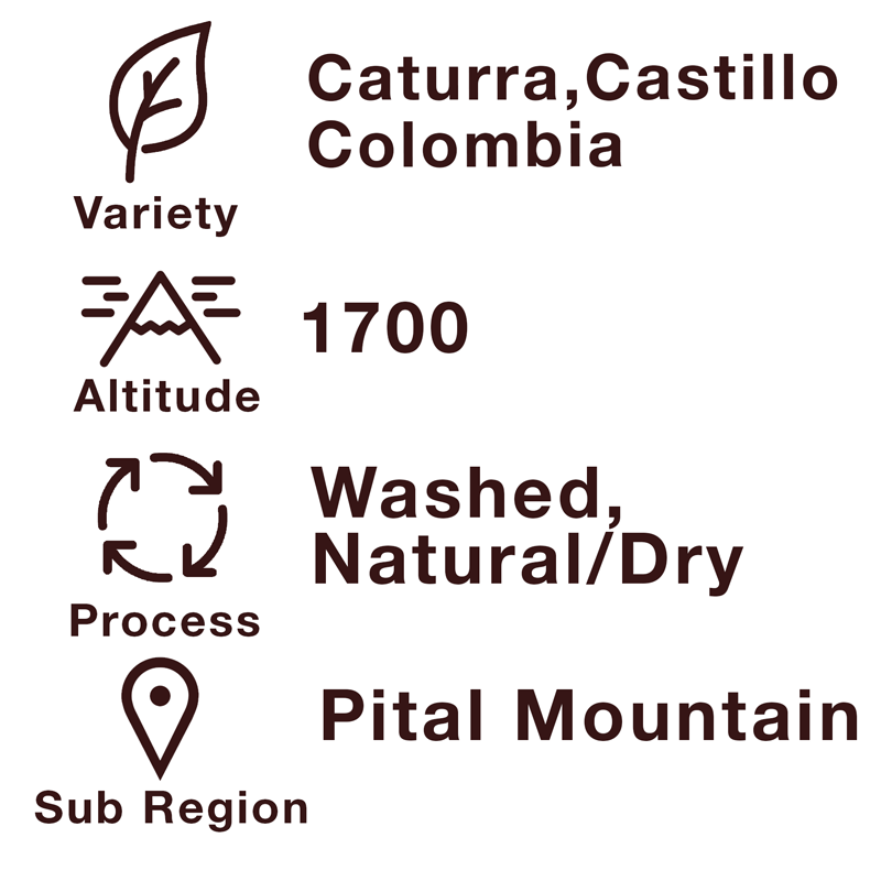 Colombia - Arabica Caturra - Pital-Mountain - Single Origin Premium Coffee - Property