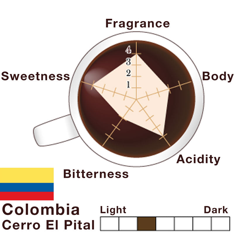 Colombia - Caturra - Pital-Mountain - Single Origin Premium Coffee - Tasting Note