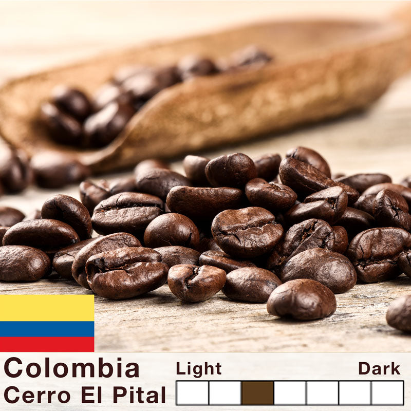 Colombia - Caturra - Pital-Mountain - Single Origin Premium Coffee