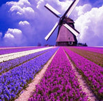 Purple Landscape with Mill