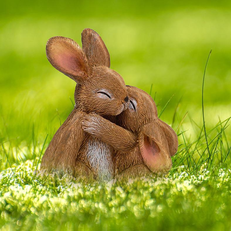 Rabbit hugs