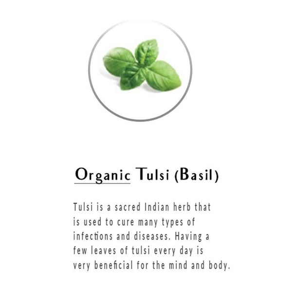 Organic Ginger Tulsi Green Tea
