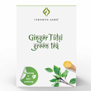 Detoxing & Anti-oxidizing - Ginger Tulsi Tea - Fernweh Agro