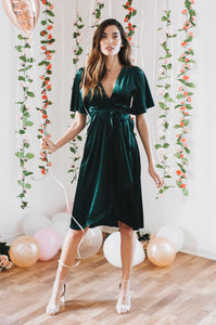 Velvet Plunge Dress - Amaryllis Land