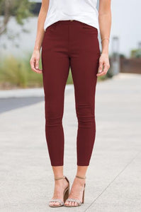 Elastic Stretch Jeggings - Amaryllis Land