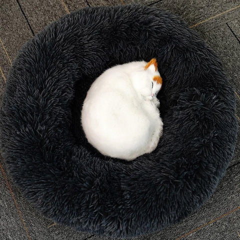 Plush pet bed in USA