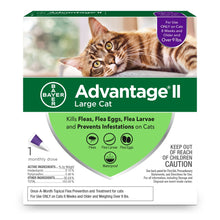 Load image into Gallery viewer, Bayer Advantage II Large Cat