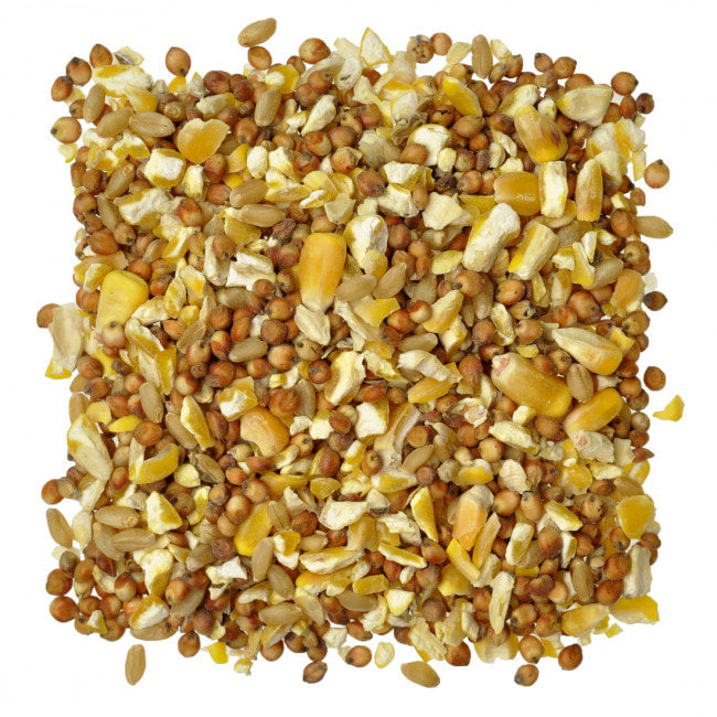 Scratch Grains (50 lb)