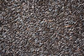 Thistle Seed (50 lb)
