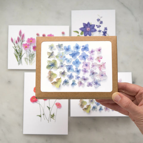 Card set - classic flowers of summer