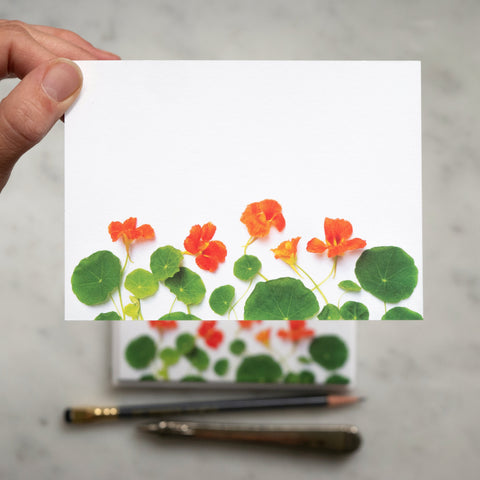 Flat Card set - Nasturtiums
