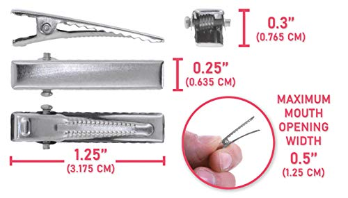 Measurements of Alligator Hair Clips