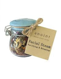 Anoint Facial Steamer
