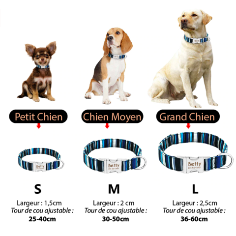 guide-tailles-collier-chien