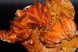VANADINITE Lustrous crystals on Barite Mibladen Morocco 101x82x32mm