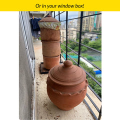 Daily Dump composter in window box