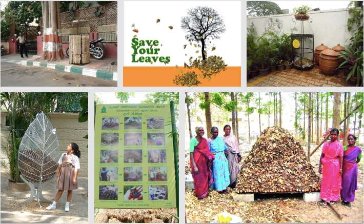 Daily Dump leaf composter at different locations
