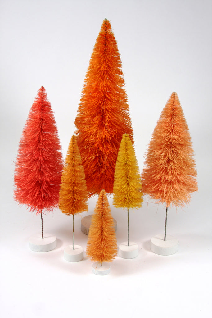 Orange Bottle Brush Tree Collection