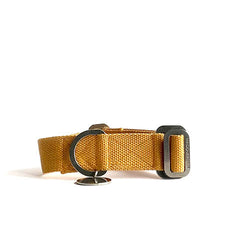 washable mustard dog collar, canvas dog collar