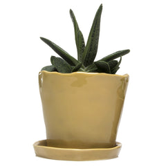 Big Tika Planter - Caramel, ceramic potted planter