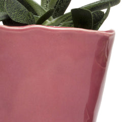 Big Tika Planter - Raspberry