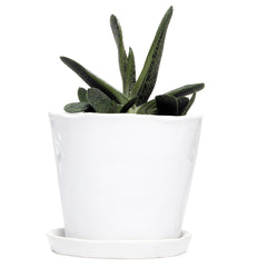 Big Tika Planter - White, ceramic potted planter